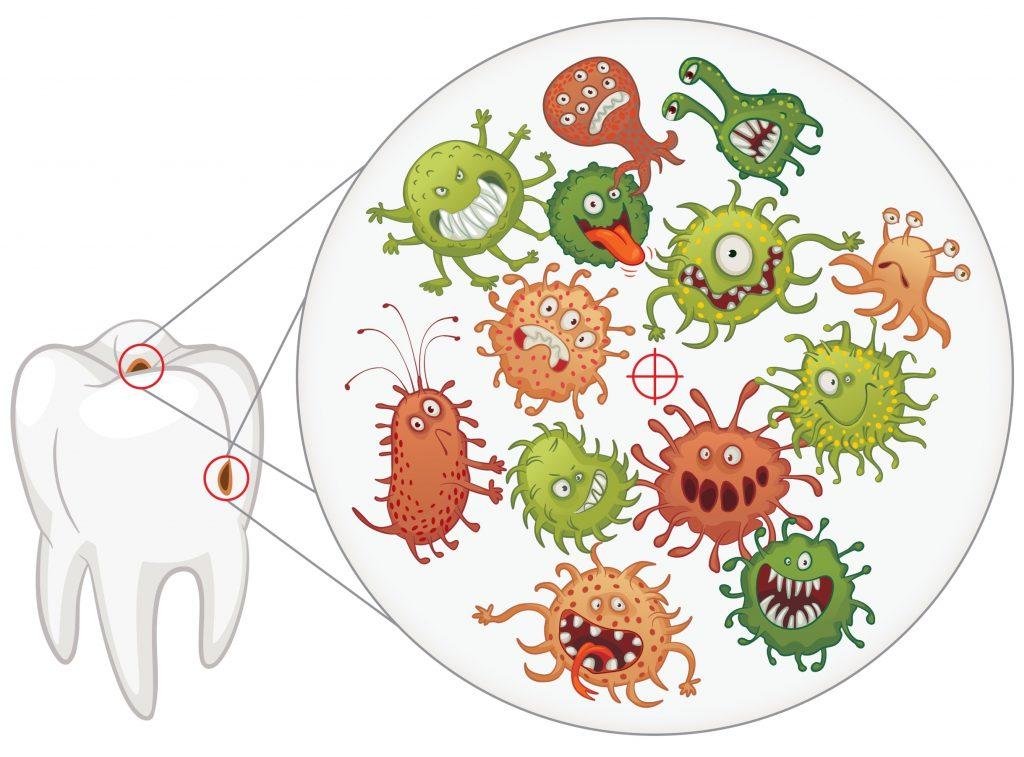 Бактерии кариес